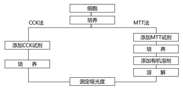 cck8实验步骤